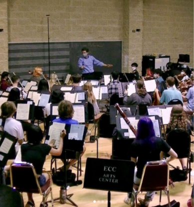 The Elgin Youth Symphony Orchestra offers area muscians an  opportunity to learn and explore. Photo by Lynn Martin